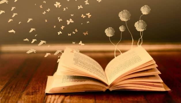 4 Điều cần biết kinh doanh cửa hàng sách hiệu quả dành cho người mới bắt đầu.
